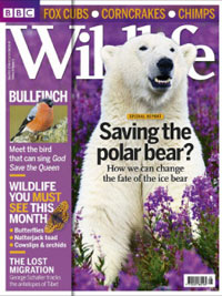 BBC WildLife may 2013
